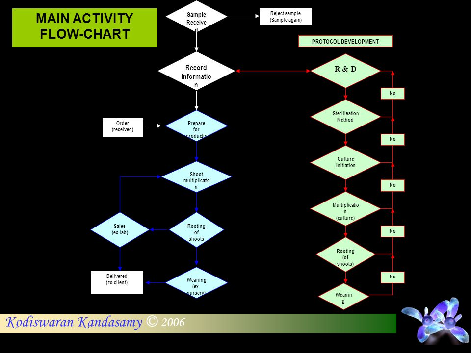 MAIN ACTIVITY FLOW-CHART Prepare for production