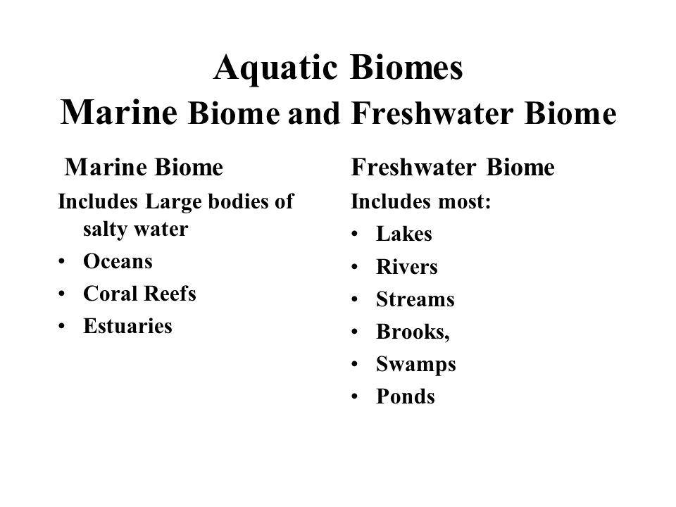 Aquatic Biomes Marine Biome and Freshwater Biome