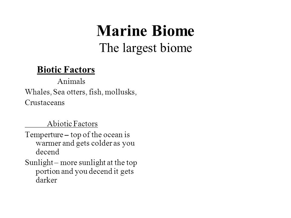 Marine Biome The largest biome