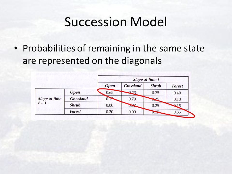 Succession Model Probabilities of remaining in the same state are represented on the diagonals