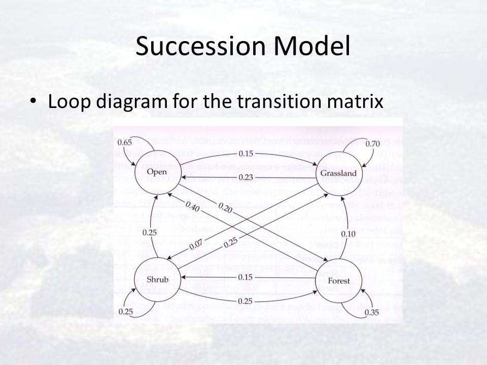 Succession Model Loop diagram for the transition matrix