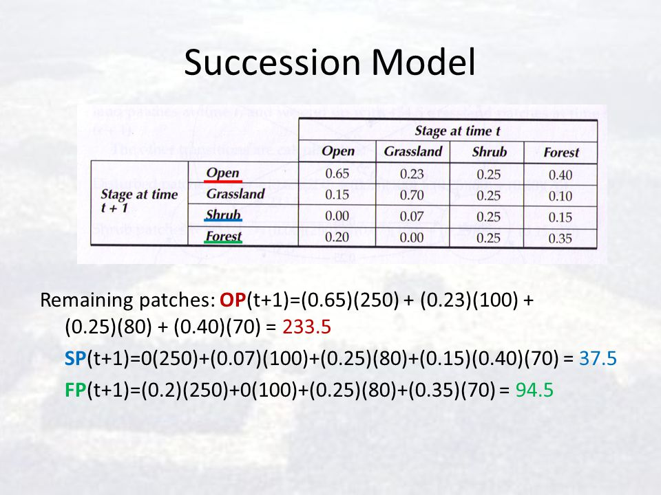 Succession Model Remaining patches: OP(t+1)=(0.65)(250) + (0.23)(100) + (0.25)(80) + (0.40)(70) = 233.5.