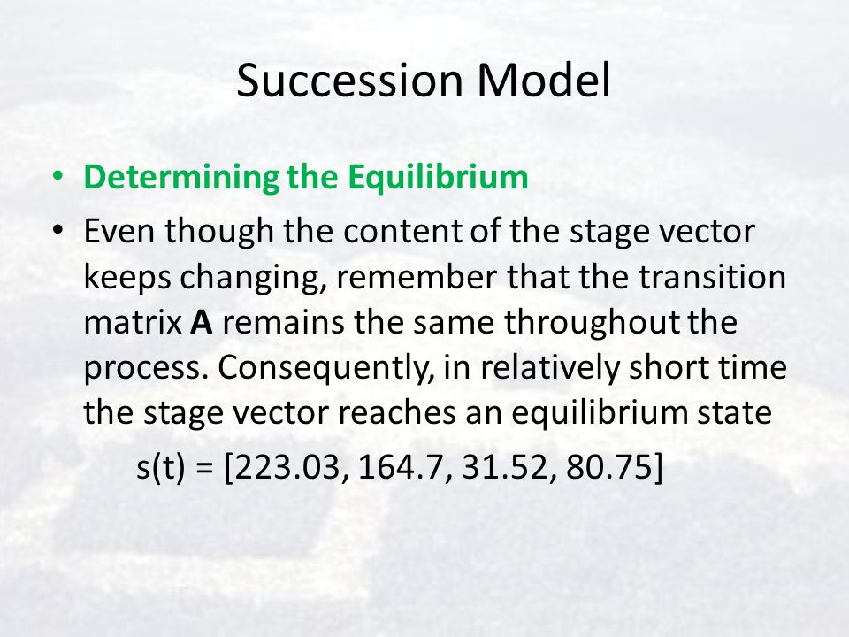 Succession Model Determining the Equilibrium