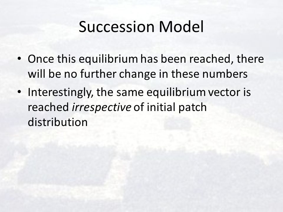 Succession Model Once this equilibrium has been reached, there will be no further change in these numbers.