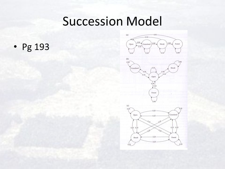 Succession Model Pg 193