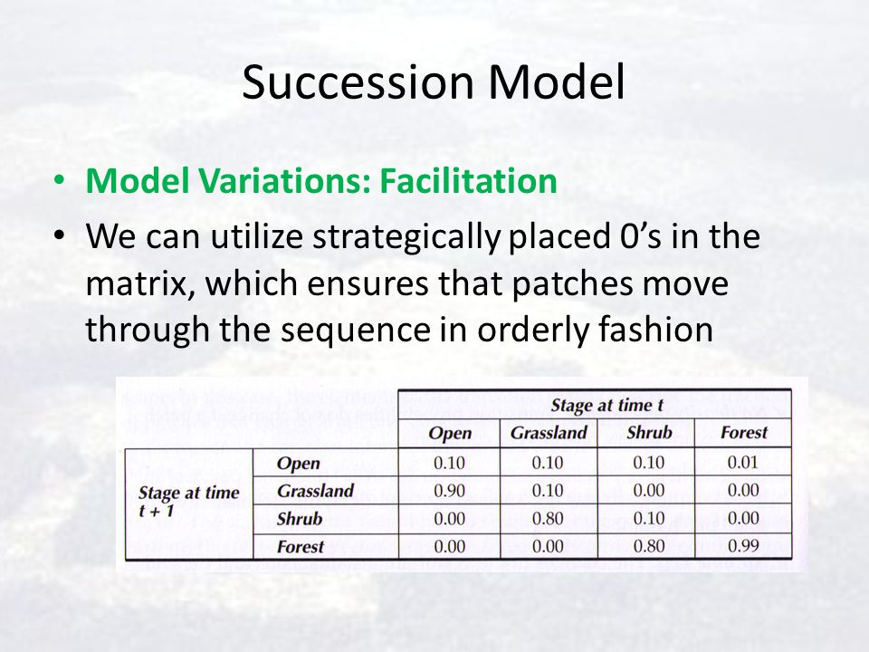 Succession Model Model Variations: Facilitation