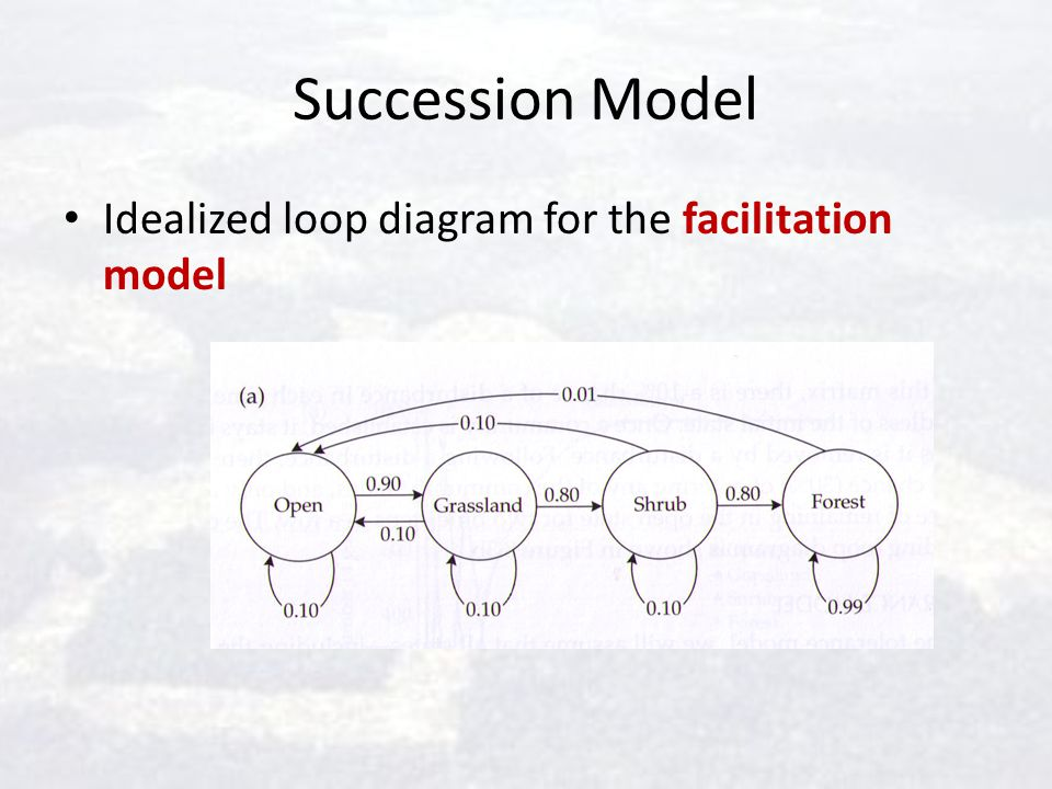 Succession Model Idealized loop diagram for the facilitation model