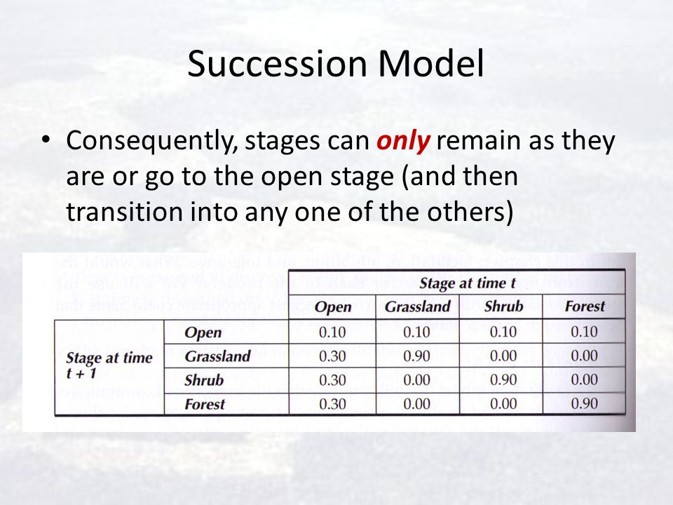 Succession Model Consequently, stages can only remain as they are or go to the open stage (and then transition into any one of the others)