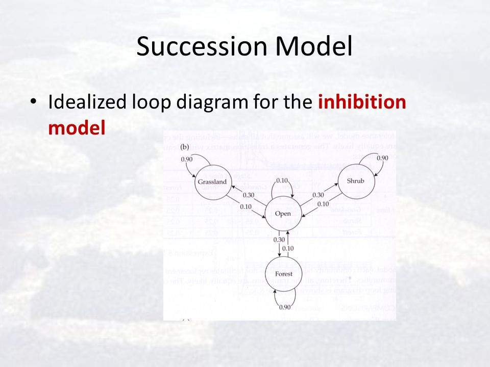 Succession Model Idealized loop diagram for the inhibition model