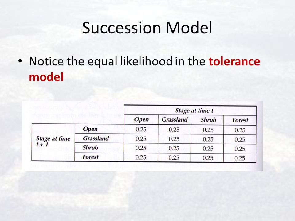 Succession Model Notice the equal likelihood in the tolerance model