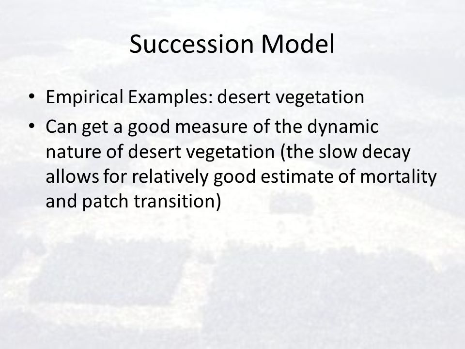 Succession Model Empirical Examples: desert vegetation