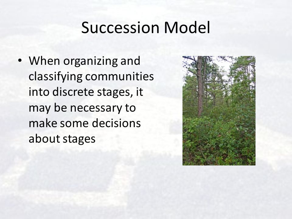 Succession Model When organizing and classifying communities into discrete stages, it may be necessary to make some decisions about stages.