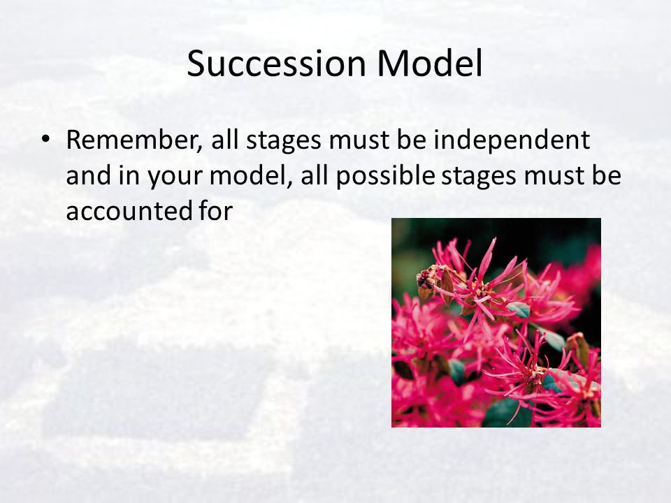 Succession Model Remember, all stages must be independent and in your model, all possible stages must be accounted for.