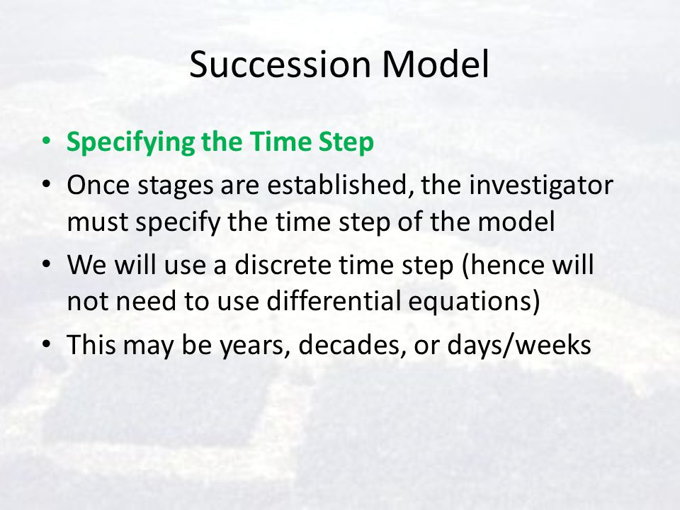 Succession Model Specifying the Time Step