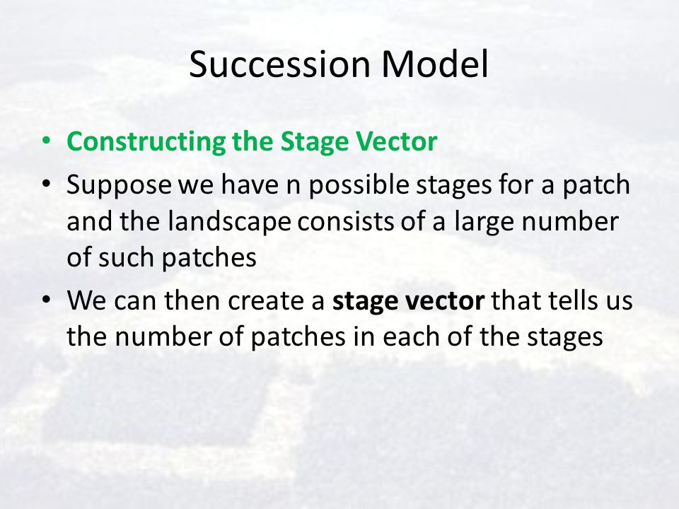 Succession Model Constructing the Stage Vector