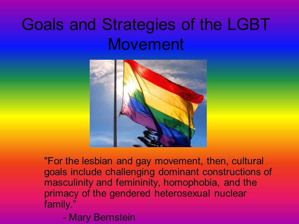 Goals and Strategies of the LGBT Movement