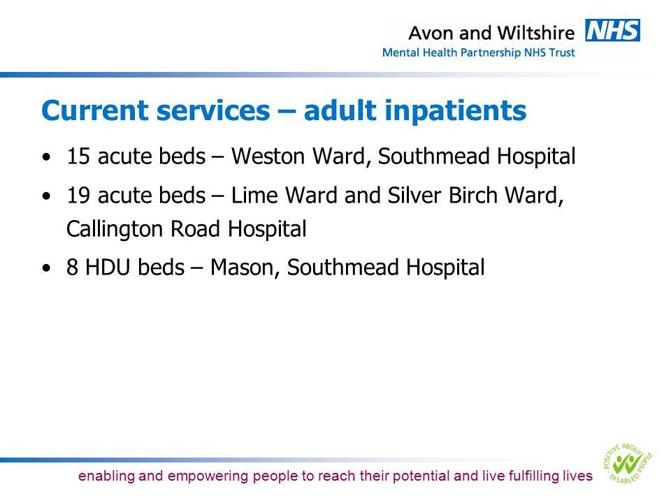Current services – adult inpatients