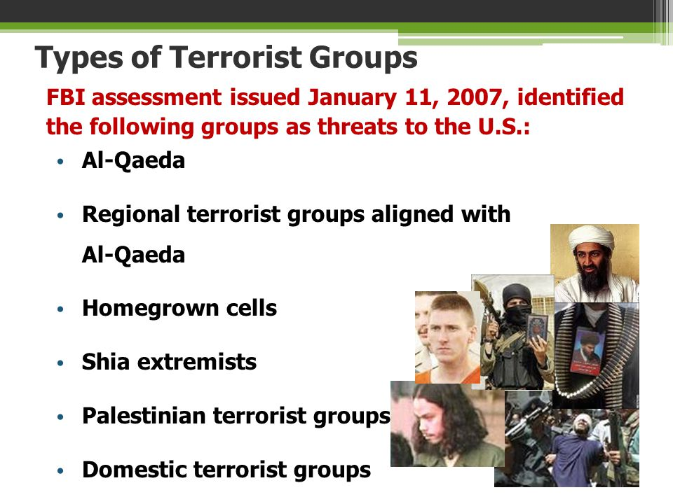 Types of Terrorist Groups