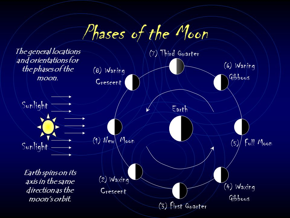 Phases of the Moon Sunlight Sunlight Earth