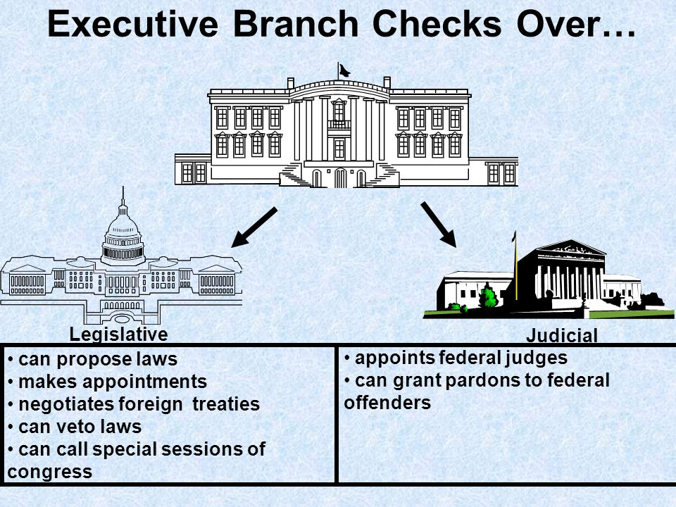 Executive Branch Checks Over…