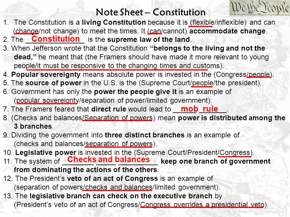 Constitution mob rule Checks and balances