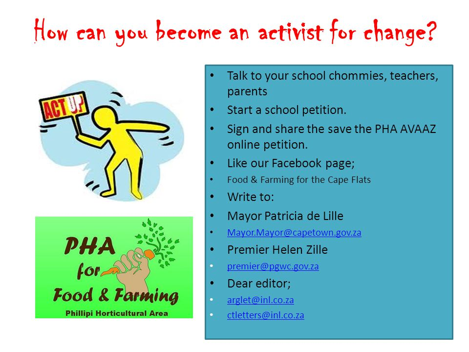 How can you become an activist for change