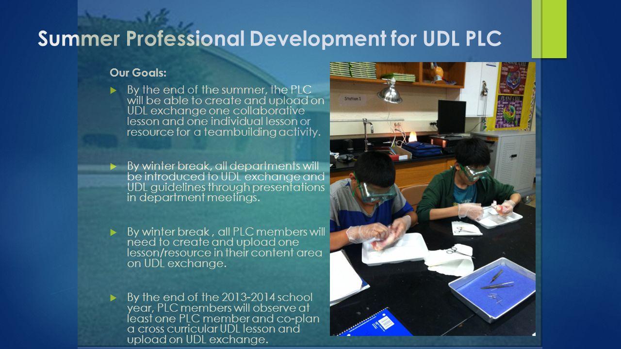 Summer Professional Development for UDL PLC
