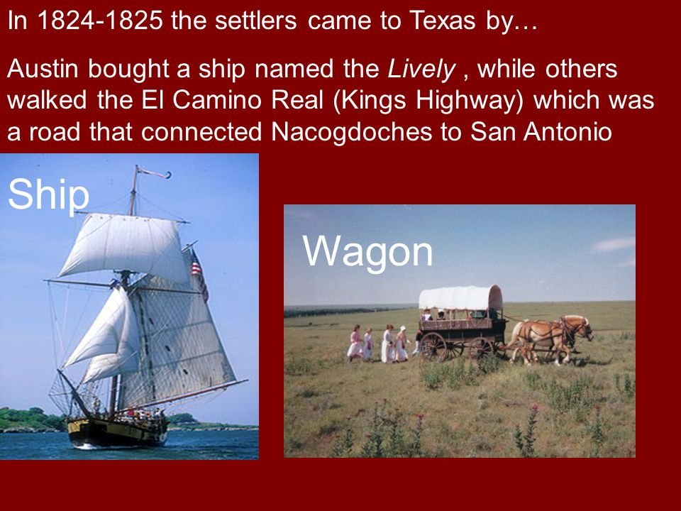Ship Wagon In 1824-1825 the settlers came to Texas by…