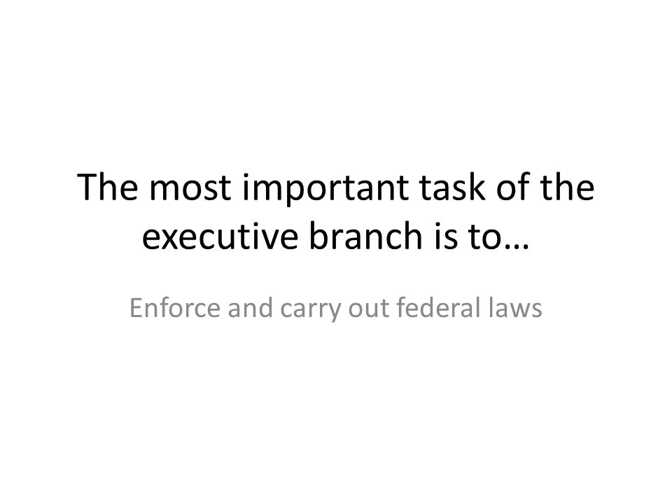 The most important task of the executive branch is to…