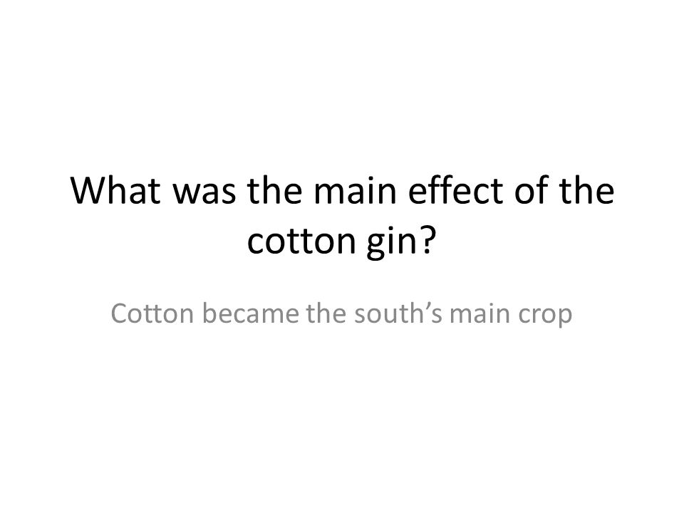 What was the main effect of the cotton gin