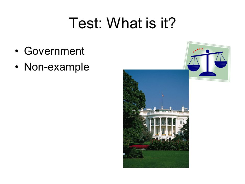 Test: What is it Government Non-example