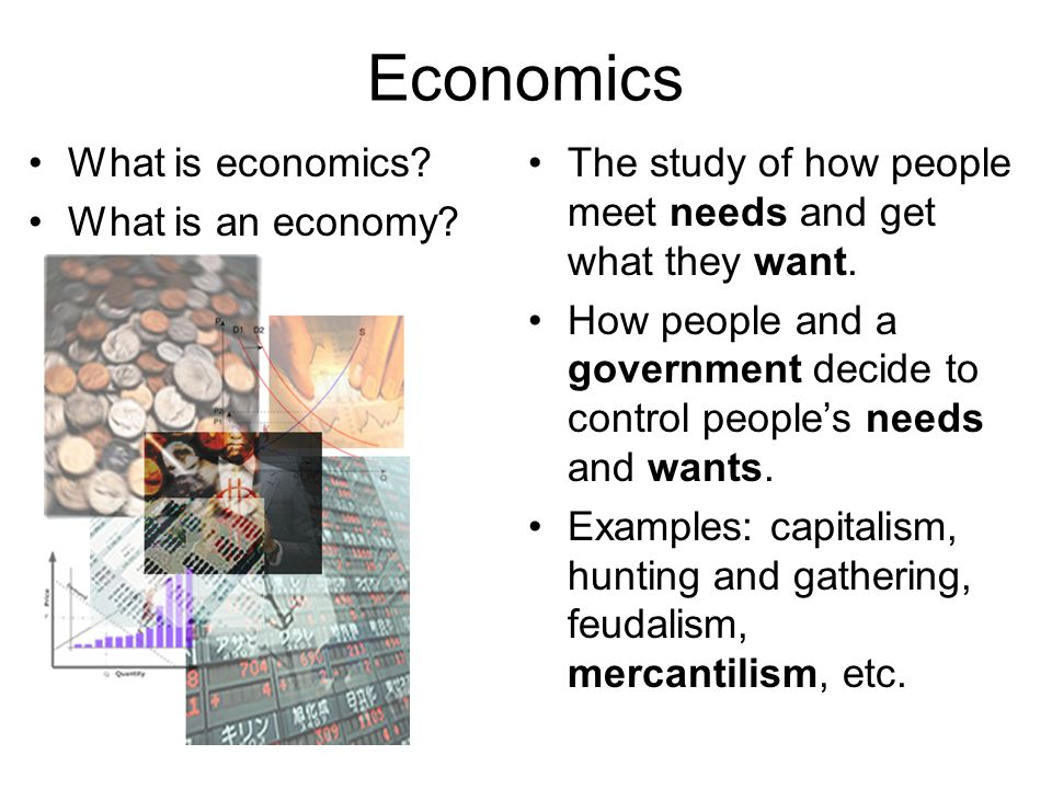 Economics What is economics What is an economy