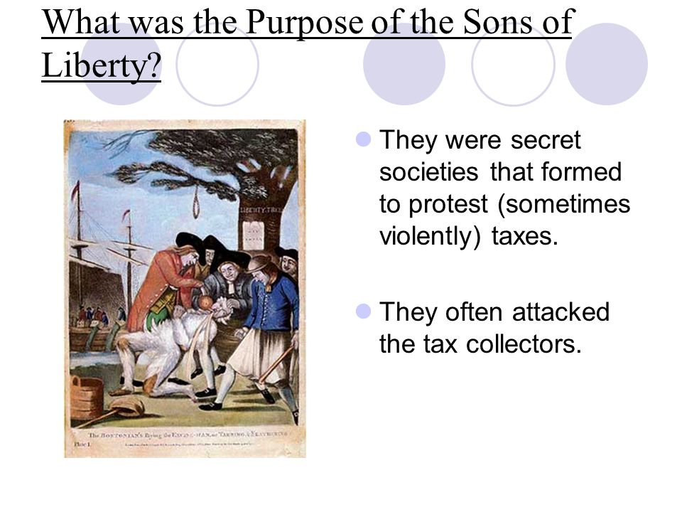 What was the Purpose of the Sons of Liberty