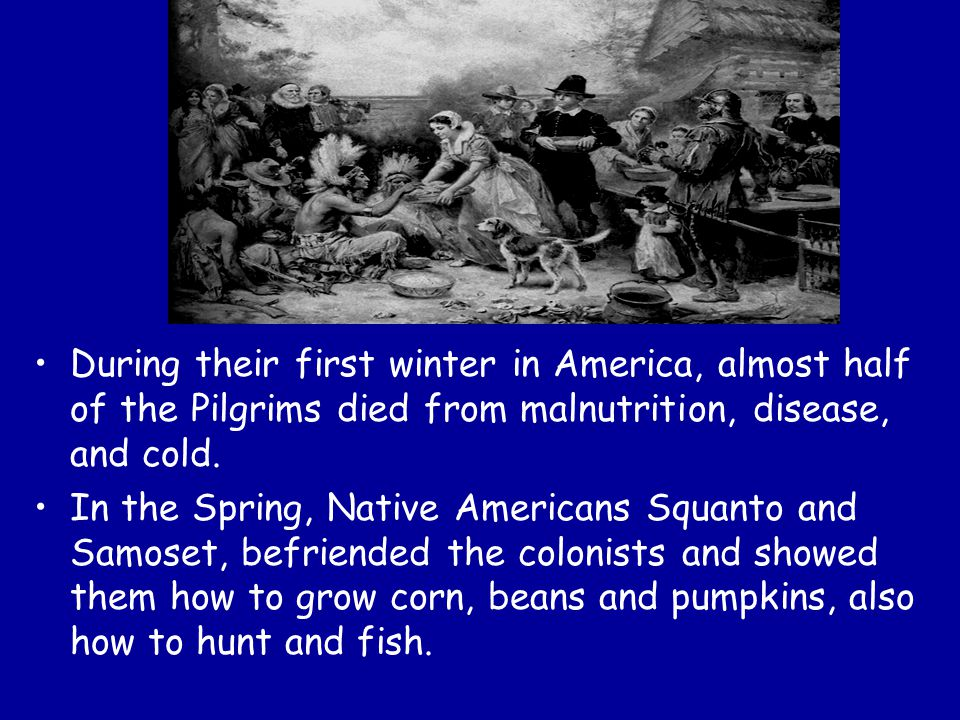 During their first winter in America, almost half of the Pilgrims died from malnutrition, disease, and cold.