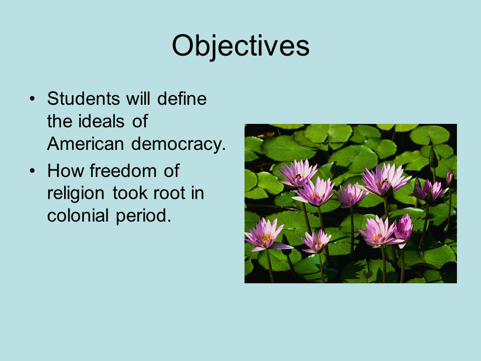 Objectives Students will define the ideals of American democracy.