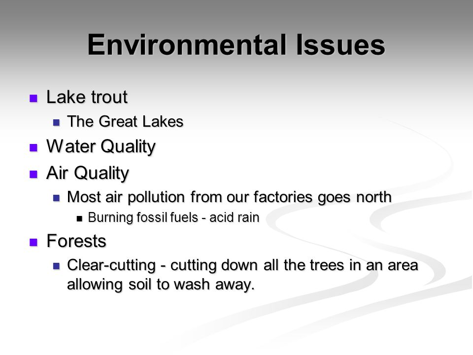 Environmental Issues Lake trout Water Quality Air Quality Forests