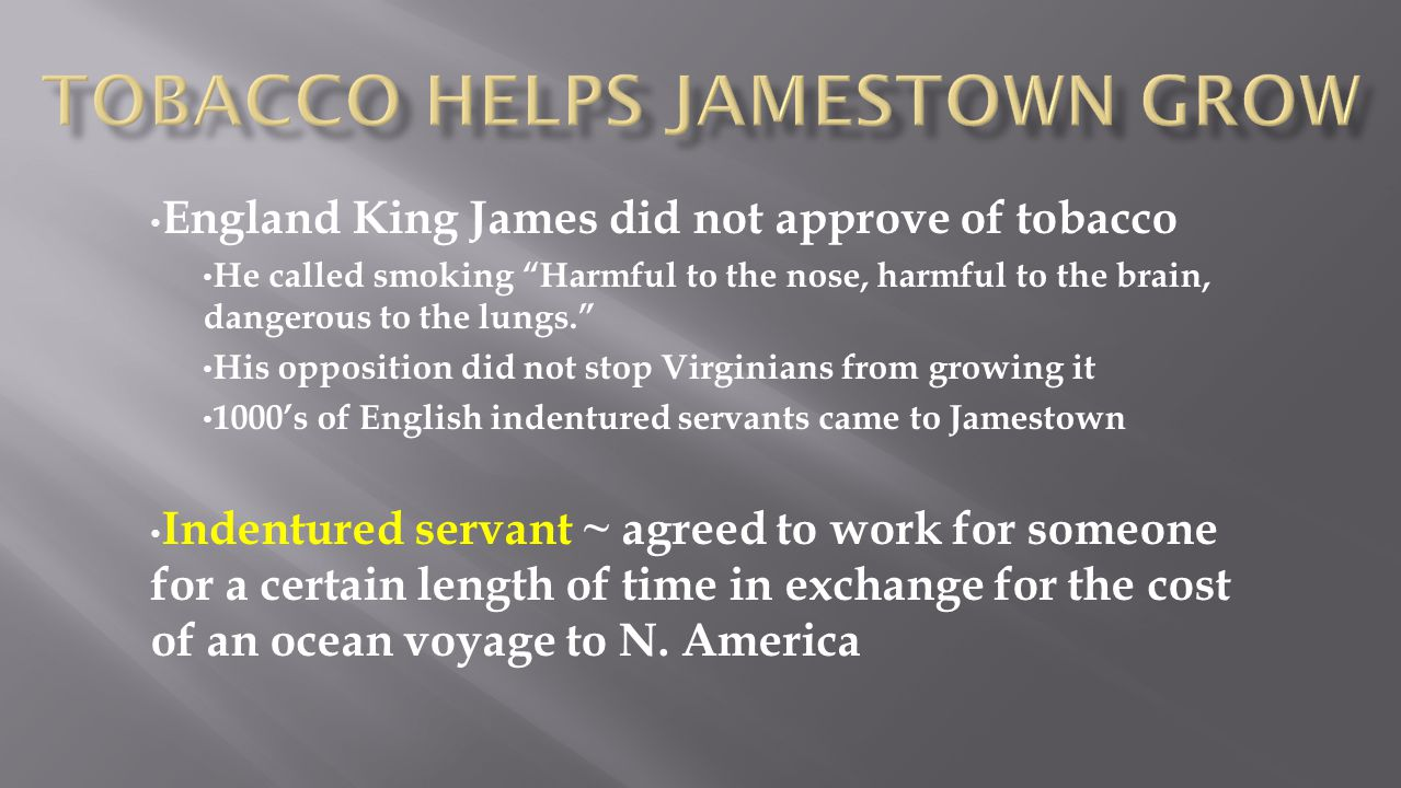Tobacco Helps Jamestown Grow