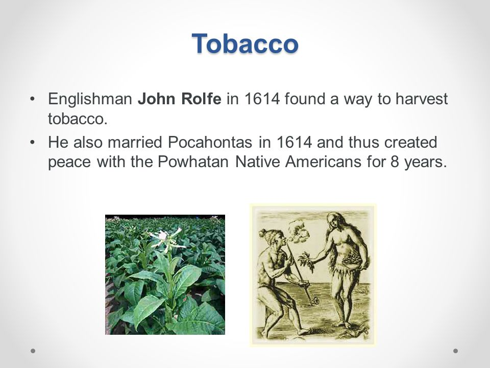 Tobacco Englishman John Rolfe in 1614 found a way to harvest tobacco.