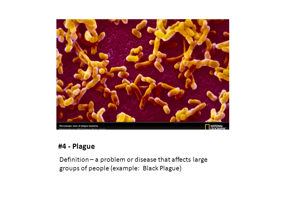 #4 - Plague Definition – a problem or disease that affects large groups of people (example: Black Plague)