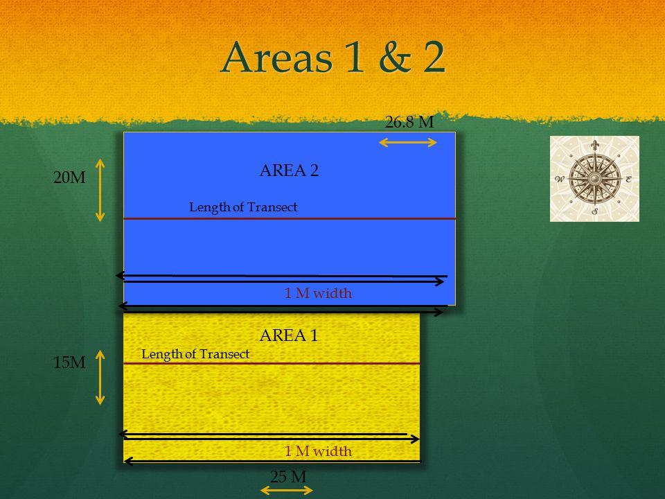 Areas 1 & 2 26.8 M AREA 2 20M AREA 1 15M 25 M 1 M width 1 M width