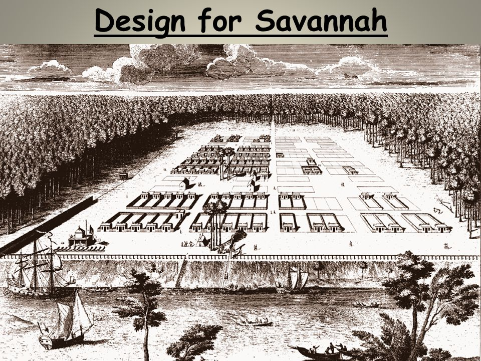 Design for Savannah