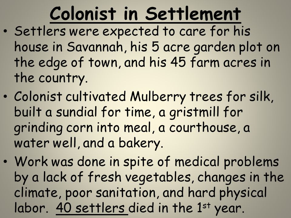Colonist in Settlement