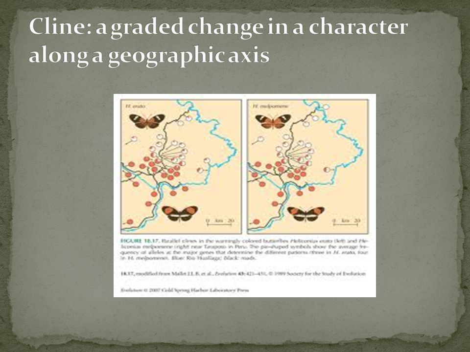 Cline: a graded change in a character along a geographic axis