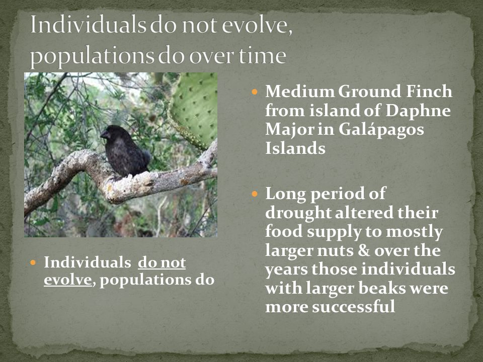 Individuals do not evolve, populations do over time