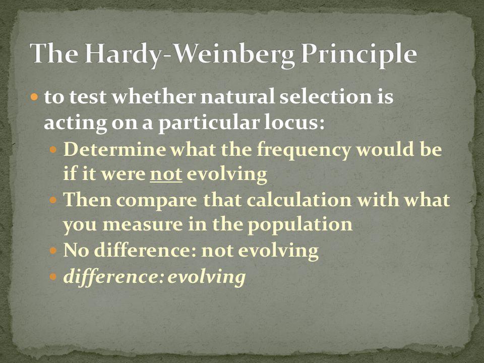 The Hardy-Weinberg Principle