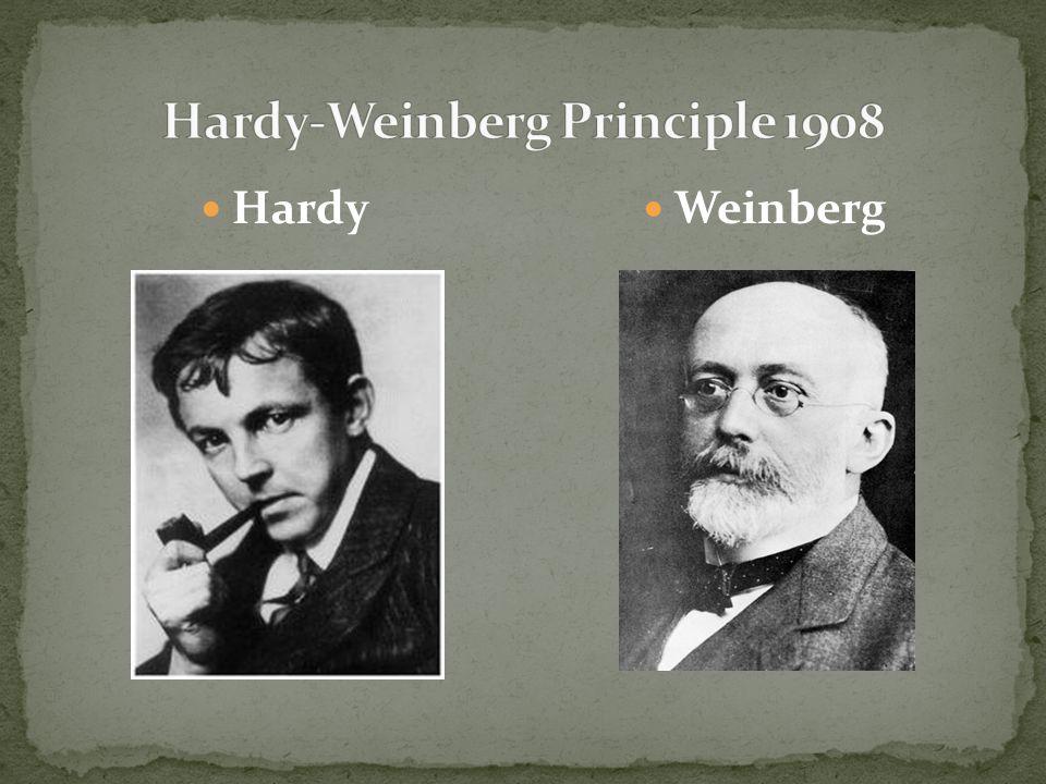 Hardy-Weinberg Principle 1908