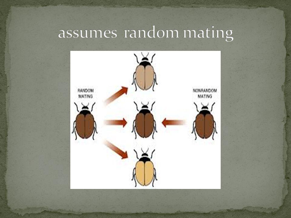 assumes random mating