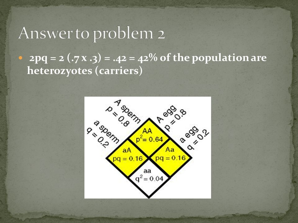 Answer to problem 2 2pq = 2 (.7 x .3) = .42 = 42% of the population are heterozyotes (carriers)