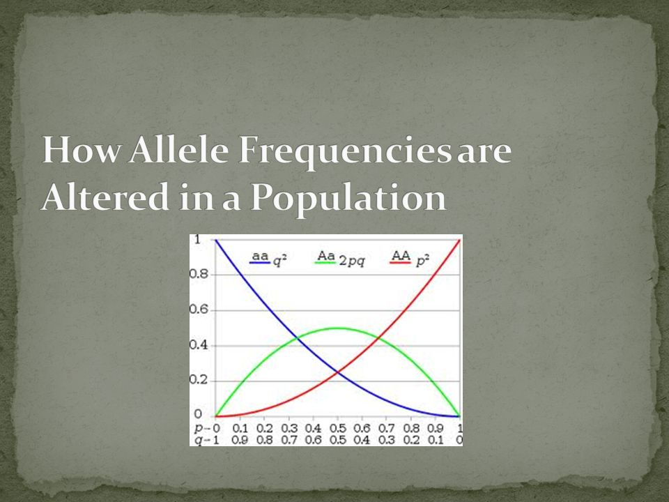 How Allele Frequencies are Altered in a Population