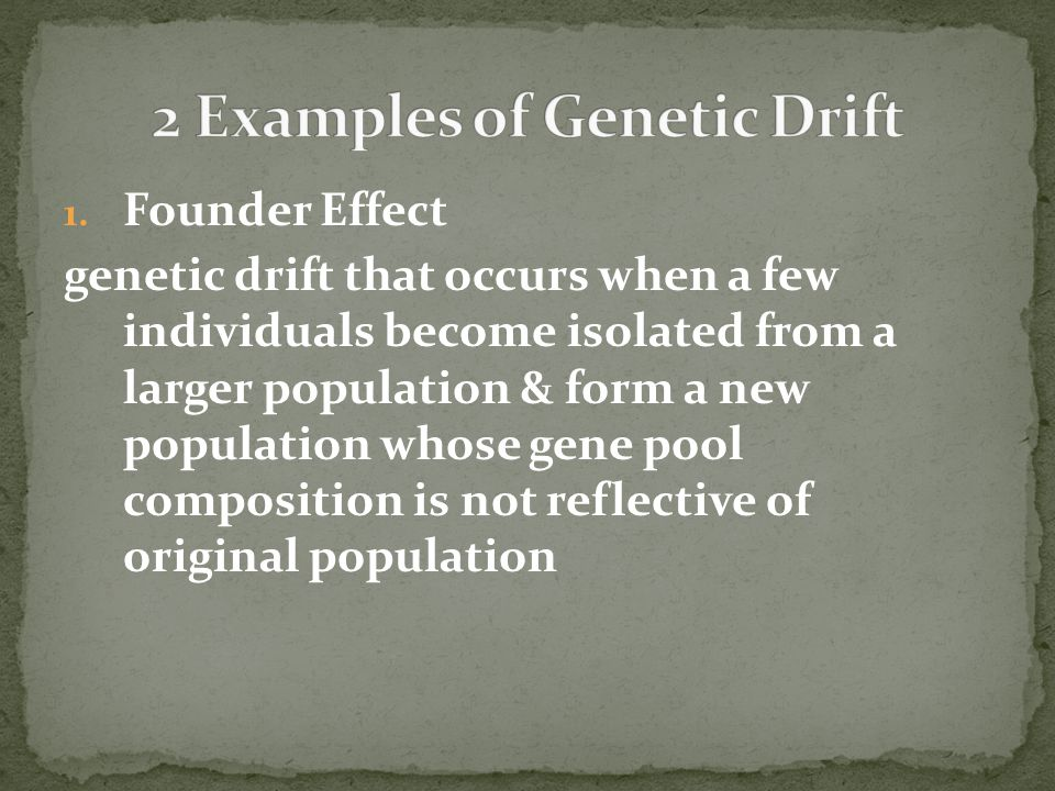 2 Examples of Genetic Drift